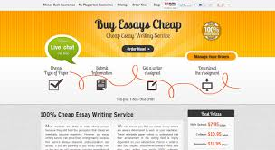 who writes best custom essays  buyessayscheap com review
