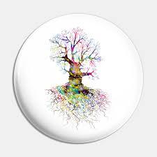 Oak Tree Size Chart Oak Tree