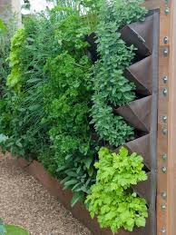 here is a simple and clever solution for growing small vegetable plants a hanging garden