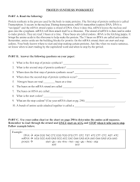 Use Your Codon Chart To Determine The Amino Acid Sequence Protein Synthesis Worksheet