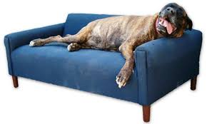 image of extra large dog lounge chair couch