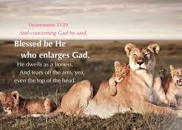 lioness and cubs quotes. Fine And Deuteronomy 332021 And Concerning Gad He Said Blessed Be He Who Enlarges  Gad Dwells As A Lioness Inside Lioness Cubs Quotes Q