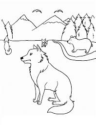Small Picture Free Printable Coyote Coloring Pages For Kids Coloring Home