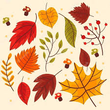 Free Vector | Autumn leaves collection theme