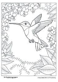 Printable Bird Coloring Pages Unique Free Birds Coloring Pages