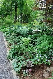 Small Picture Garden Design Garden Design with Garden Design for a Shade Garden