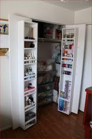 Small Bedroom Closet Storage Bedroom Storage Ideas For Small Bedroom Closets Small Bedroom