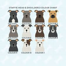 Staffy Colours Chart