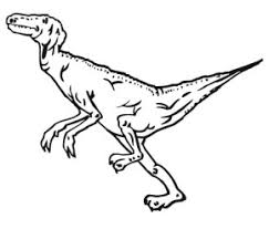 Small Picture Dinosaurs T Rex Dinosaur Coloring Page TRex Coloring Page T