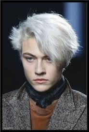 Teinture Cheveux Homme Blanc