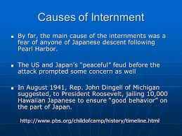 potential essay topics identify the arguments for and against  causes of internment by far the main cause of the internments was a fear of