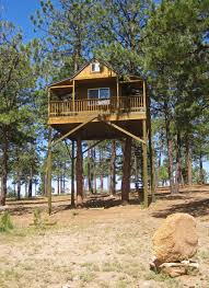 Cool Treehouses For Kids A Very Cool Tree House In Truchas Nm High Road Artist