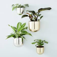 These planters are designed to hold any kind of small plant including air plants and succulents. 20 Best Wall Planters Gorgeous Indoor And Outdoor Plant Holders