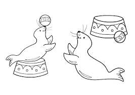 Seal Coloring Pages Seal Coloring Pages S Free Printable