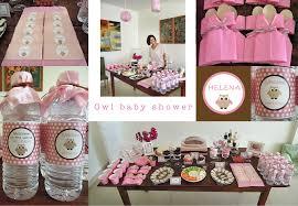 Interior design owl themed baby shower decoration ideas cool interior  design owl themed baby shower decoration