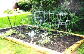 Home Vegetable Garden Design Ideas - Home Design Ideas