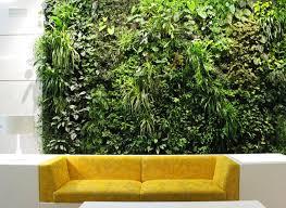 LivingWall_1. LivingWall_1. Living walls can improve indoor ...