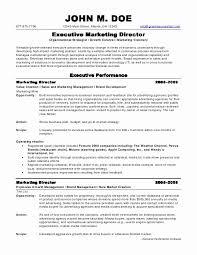 Sample Executive Resume Format Gorgeous International Marketing Manager Resume Sample Impressive Marketing