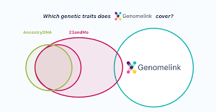 Which Genetic Traits Are Offered On Each Genetic Testing