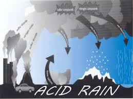 essay on acid rain for students children in simple words acid rain cause