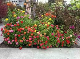 custom small flower garden ideas