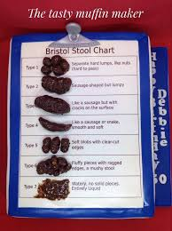 Bristol Stool Chart Cake By Andrea Cakesdecor