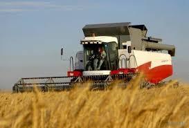 Загрузить Курсовая по экономики отрасли животноводства Курсовая по экономики отрасли животноводства