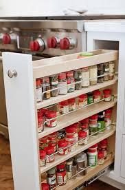 kitchen storage furniture ideas. kitchen spice storage ideaslike the idea of pullout but furniture ideas h