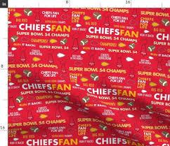kansas city chiefs super bowl 54