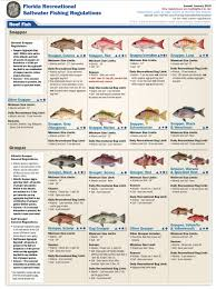Florida Freshwater Fishing Regulations Chart Panama City Beach Fishing Resources