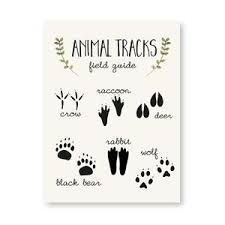 Looking for the ideal animal tracks wall decals to express yourself? Cute Animal Wall Decor Art Prints