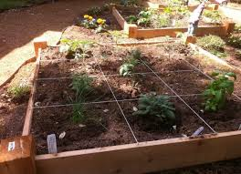 square foot gardening ideas and tips