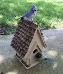 to make one you need a wooden birdhouse