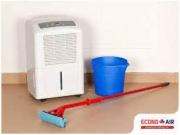 do you need a dehumidifier