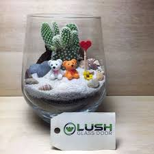 cute mini couple bears theme succulent terrarium by lush glass door