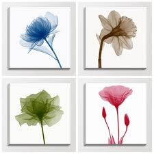 wall art flowers photography