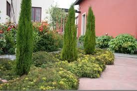 Small Picture For a waterwise landscape consider Mediterranean garden design
