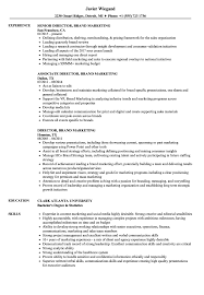 Director Brand Marketing Resume Samples Velvet Jobs