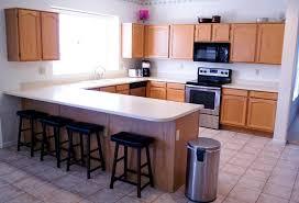 Quartz Vs Granite Countertops For Kitchens Interior Kitchen Sink Design Ideas With Quartz Vs Granite
