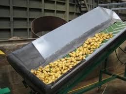 Курсовая работа Производство этилового спирта из картофеля Подработка картофеля заключается в отделении и удалении мусора от сырья мойке и дроблении