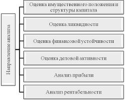 Анализ финансового состояния предприятия ООО Лента и пути его  Выделим шесть направлений применяемых для анализа финансового состояния предприятия показанных на рисунке 1 1