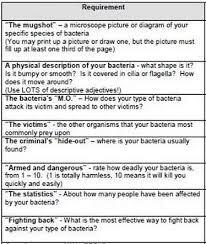 Bacteria Animal And Plant Cell Venn Diagram Bacteria Good Or Bad