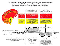 Scientific Chart Of German New Medicine German New Medicine And Alternative Cancer Treatment