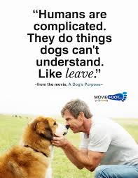 Collection Of A Dogs Purpose Quotes 36 Images In Collection