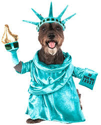 Rubies Costume 580540_s Statue Of Liberty Pet Costume Small