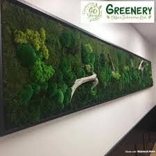 office greenery. Office Greenery