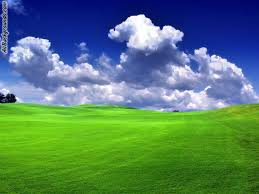 grass and sky backgrounds. Beautiful And Rightclick Here And Save The Grass And Sky Background Image Inside Backgrounds G