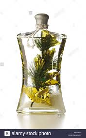 Decorative Infused Oil Bottles Bottle Of Bath Oil Infused With Pine Twig Christmas Decoration 51