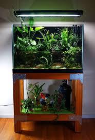 fish tank lighting ideas. Cool 30+ Awesome Fish Tank Ideas Https://gardenmagz.com/30 Lighting R