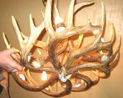 deer antler chandelier canada chandeliers deer antler chandelier s petite elk antler